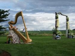 Nina with harp